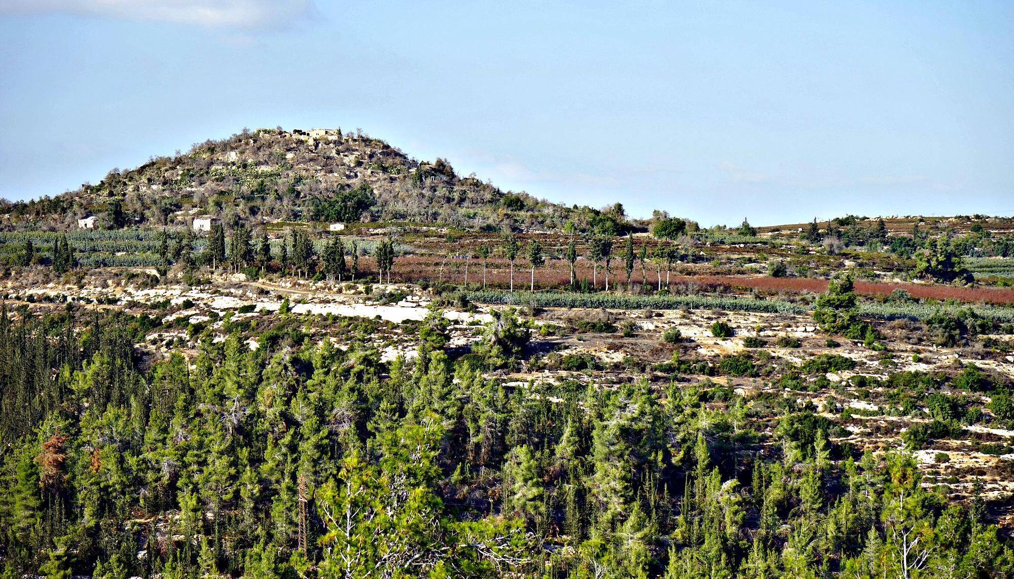 Covenant Tours Israel